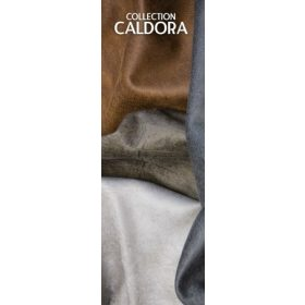 Caldora